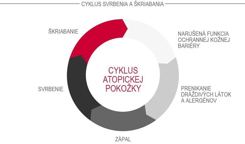 Cyklus atopickej pokožky (cyklus svrbenia aškriabania)